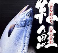 沖流し紅鮭