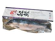 紅鮭(姿)