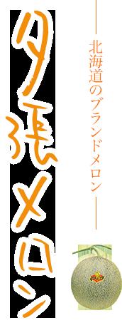 北海道のブランドメロン 夕張メロン