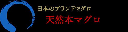 日本のブランドマグロ、大間産の天然本マグロです