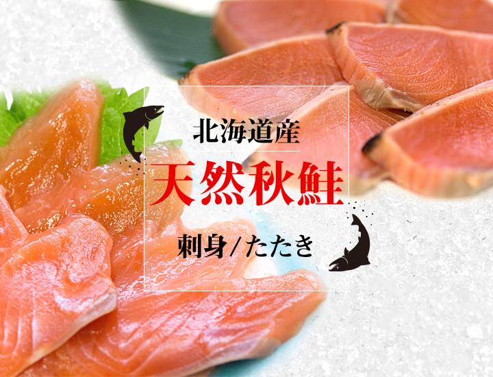 北海道産 天然秋鮭 刺身 たたき