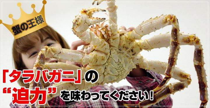 蟹の王様 タラバガニの迫力を味わってください!